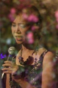 花と蝶 - YOSHIの日記