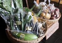 無農薬・有機栽培の野菜 / 前田りんご園 - bambooforest blog