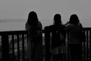 Snap No220 - 東京Shy 写歩く