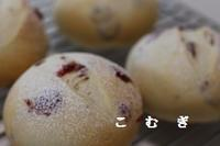 9月の日程のお知らせ - パン・お菓子教室 「こ む ぎ」