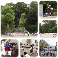 後期夏期保育 - ひのくま幼稚園のブログ