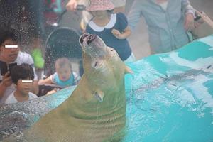 「ロッシー」と「バニラ」 - 動物園放浪記