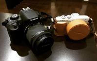 我が家のカメラ - 日々のこと**ゆらりゆらり**