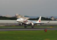 久しぶりに飛行機の流し撮り(JAL編) - スポック艦長のPhoto Diary
