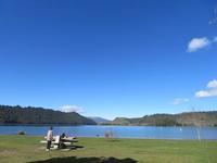 カモと湖 - いい旅・夢Kiwi スカイキウィの夢日記
