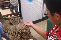 ふれあい動物園 「もふもふ動物園」 - 金沢市 床屋/理容室/散髪  「ヘアーカット ノハラ ブログ」 メンズヘッドスパは当店で!