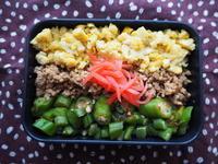 8/25(金)三色丼弁当 - ぬま食堂