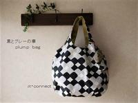 ひさしぶりの plump bag★ - ★ 星soraの下で・・・ 製作日記 ★