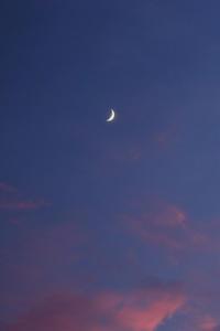夕月  - 風の彩り-2