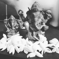 Ganapati - Yoga teacher Atsuko 《Purple lotusflow3r》blog