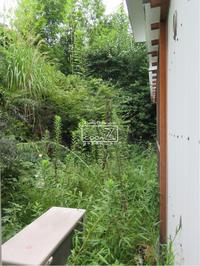 植物的生活839 - Atelier Botanique COCA-Z