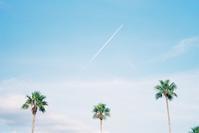 飛行機雲。 - SunsetLine