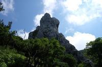 夏の剣山 - ブナの写真日記