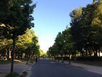 久々のジョギングは早朝から 2017.8.27 - ちゃーぼー日記