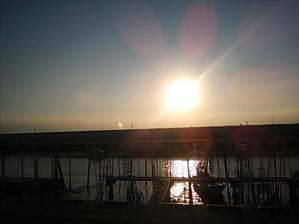 有明海フェスタ - tekotanのあしあと