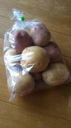 ずりんこと豆乳で育てた味のあるジャガイモ を頂きました。 - Eこと♪Eもの♪etc...