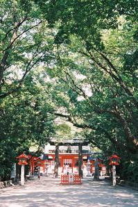 参道 - 散策日記