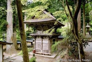 背景は横蔵寺の山門 - とことん写真