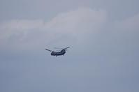 大賀蓮 飛行機 2 - 生きる。撮る。
