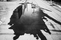 異常な夏 - HTY photography club