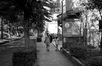 日影の時間 - そぞろ歩きの記憶