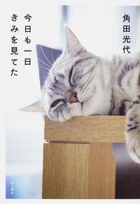 【猫本3冊】 - お散歩アルバム・・夏終盤