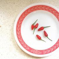 Mexican Chilis - 烏帽子への風