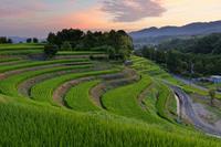 鳳凰が飛ぶ - katsuのヘタッピ風景