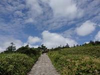 いわて夏旅⑧ 〜八幡平~ - ある日ある時