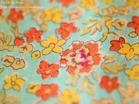 ネムネムDay - Risaのフォトログ