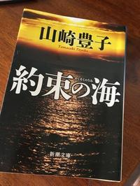 山崎豊子著「約束の海」 - やさしい光のなかで