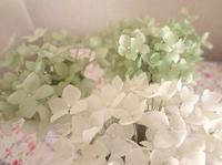 グリーンとホワイト - handmade flower maya