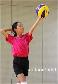 バレーボール 2017夏 - sakamichi