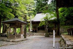 背景は谷汲横蔵寺の石垣 - とことん写真