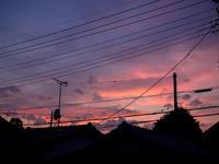 夕焼け - 空を見上げて