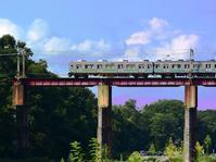 秩父で撮り鉄♪・・・荒川橋梁を渡る車両色々。SLも。 - 『私のデジタル写真眼』