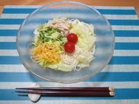 野菜の日に!サラダそうめんはいかが? - candy&sarry&・・・2