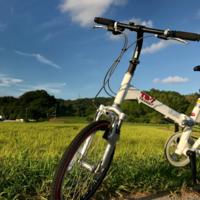 その者、自転車に乗りて金色の野に… - azukki的.