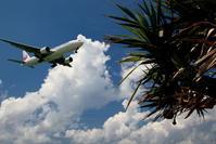 夏休み最終日の1コマ - 南の島の飛行機日記