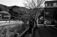 道草(その2) - そぞろ歩きの記憶