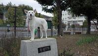 Vol.1229 新田公園 - 小太郎の白っぽい世界