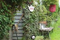 箱根写真美術館のCafe「Plaisir de L'oeuf」 - キラキラのある日々