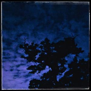 中文七?和俳句:?山之夜/日本語短歌:龍山の夜 - NPO日中