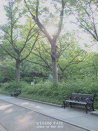 CHASHITSU Japanese Tea & Coffee   チャシツ ジャパニーズ ティー アンド コーヒー  大阪・本町 - Favorite place