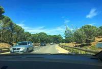 サントロペへ向かいます - くりくりのいた午後 bis