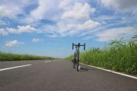 江戸川サイクリスト - take it easy !