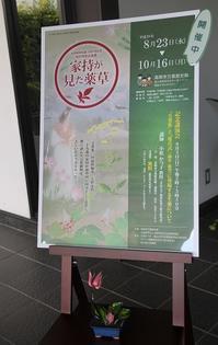 高岡市万葉歴史館  秋の特別企画展 家持が見た薬草 - シェーンの散歩道