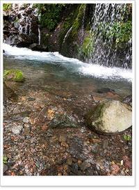 八ヶ岳へ旅行3 (吐竜の滝) - お散歩日和+カエル達