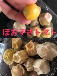 珍しい果物?野菜 - タイ式マッサージ サイチャイ