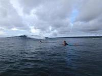 思ったより風がなく。 - AFRO SURF